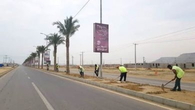 تصویر از توسعه متوازن فضای سبز جزیره قشم / ساخت 7000 مترمربع رفیوژ میانی شهر طبل