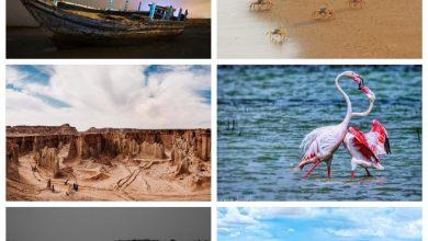 تصویر از نفرات برتر مسابقه عکاسی ژئوپارک جهانی قشم معرفی شدند
