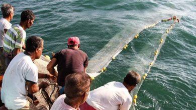 تصویر از ۵۰۰ صیاد قشمی برای صید میگو دل به دریا زدند