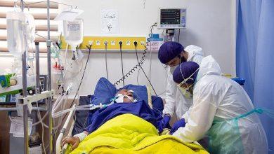 تصویر از کرونا ویروس بیمحابا در قشم یکهتازی میکند