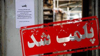تصویر از با دستور دادستان قشم؛ شرکت پودر ماهی صبا مجد پلمب شد
