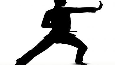 تصویر از کاراته کار قشمی در مسابقات جهانی کاتا مجازی ۲ مدال کسب کرد